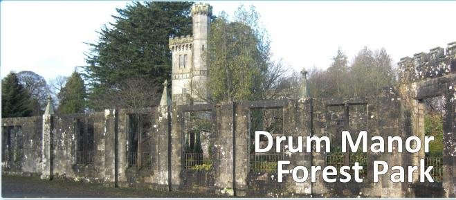 Drum Manor